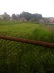 Продается земельный участок 10 соток в Калужской области - фотография №2